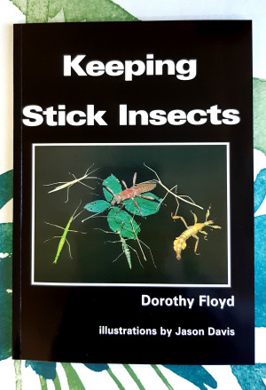Keeping Stick Insects book for advice about caring for stick insects